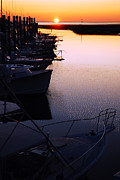 James Kirkikis Prints - Sunset on the Marina Print by James Kirkikis
