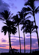 Sunset On The Palms Print by Debbie Karnes