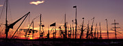 Tall Ships Prints - Sunset on the Tall Ships Print by Frederic A Reinecke