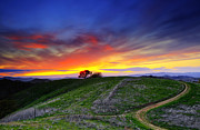 Concord Prints - Sunset on top of hillock 2. Print by Laszlo Rekasi