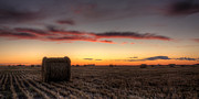Bales Framed Prints - Sunset Over A Prairie Field Framed Print by Matt Dobson
