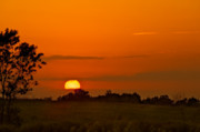 Sunset Over Horicon Marsh Print by Steve Gadomski