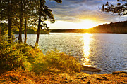 Autumn Prints - Sunset over lake Print by Elena Elisseeva