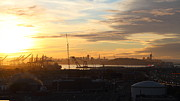Tower Crane Posters - Sunset Over San Francisco Skyline Through The Port of Oakland . 7D11029 Poster by Wingsdomain Art and Photography