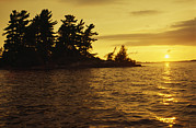 White Pines Posters - Sunset Over Small Island Poster by Gordon Wiltsie