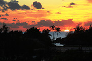 Lori Goodwin - Sunset over South Shore...