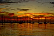 Sunset Over The Harbour Print by Nelieta Mishchenko
