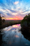 Ocular Perceptions Acrylic Prints - Sunset Over The Marsh Acrylic Print by Christopher Holmes