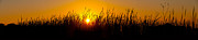 Prairie Grass Originals - Sunset Over The Prairie by Steve Gadomski