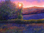 Theresa Evans - Sunset Peccioli Tucany