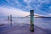 Pilings Prints - Sunset Reef Pilings Print by Adam Pender