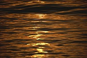 La Paz Prints - Sunset-reflected Water At La Paz Print by Raul Touzon