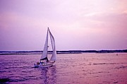 Unwind Metal Prints - Sunset sailing Metal Print by Bill Jonscher
