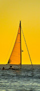 Sunset Sailing Print by Liz Vernand