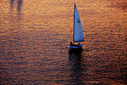 Boston Art - Sunset Sailing by Rick Berk