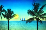 Tropical Sunset Prints - Sunset Sailor Print by Bill Cannon