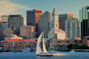 Boston Harbor Posters - Sunset Sails on Boston Harbor Poster by Susan Cole Kelly