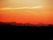 Stuart Turnbull - Sunset silhouette 2