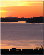 South Puget Sound Posters - Sunset Silhouette Poster by Chris Anderson
