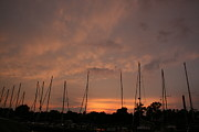 Boats Pyrography Prints - Sunset Sky Annapolis Print by Valia Bradshaw