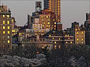 Spring Nyc Metal Prints - Sunset Spring NYC Metal Print by Robert Ullmann