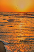 Oceans Water Prints - Sunset To Home Print by Emily Stauring
