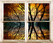 Boardroom Posters - Sunset Tree Silhouette Abstract Picture Window View Poster by James Bo Insogna