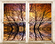 Sunset Tree Silhouette Colorful Abstract Picture Window View Print by James Bo Insogna