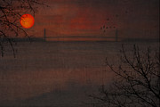 Outdoor Images Framed Prints - Sunset View Of The Verazzano Bridge Framed Print by Tom York