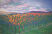 Evening Pastels - Sunset Vineyard by Becky Chappell