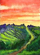Wine Country Watercolor Paintings - Sunset Vineyard by James Leonard