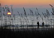 Sea Oats Prints - Sunset watching Print by David Lee Thompson
