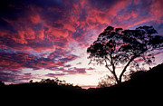William D Bachman and Photo Researchers - Sunset