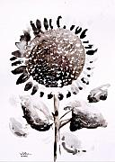 Sunflower Art Posters - SunShadow One Poster by J Vincent Scarpace