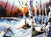 Clearing Painting Originals - Sunshine and Birch by Wilfred McOstrich