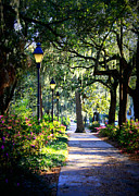 Forsyth Park Photos - Sunshine on Savannah Sidewalk by Carol Groenen