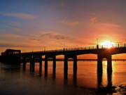 Riverscapes Posters - Sunshine Over The Kincardine Bridge Poster by Amanda Finan