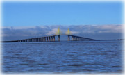 Florida Bridge Posters - Sunshine Skyway Poster by Amanda Vouglas
