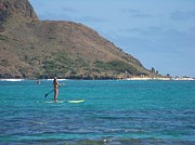 Stand Up Paddle Board Photos - SUP Boarder by Sara Ricer