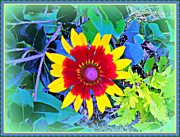 Mindy Newman Framed Prints - Super Daisy Framed Print by Mindy Newman