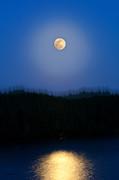 Michelle Wiarda - Super Moon Vibe