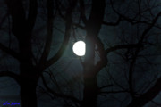 Supermoon Photos - Super Perigee Moon 3.19.2011 by Christine Segalas