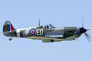 Spitfire Prints - Supermarine Spitfire Mk IX replica N1940K Cactus Fly-in March 3 2012 Print by Brian Lockett