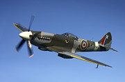 Supermarine Prints - Supermarine Spitfire Mk. Xviii Fighter Print by Daniel Karlsson