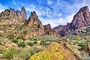 Matt Suess Prints - Superstition Mountains arizona Print by Matt Suess