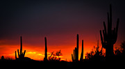Superstitious Sunset Print by Valerie Crawford