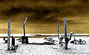 Clemente Digital Art Metal Prints - Surf Camp at Trestles Metal Print by Ron Regalado