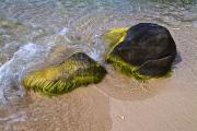Virgin Islands Photos - Surf Washing Over Algae Covered Rocks by Todd Gipstein
