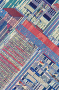 Microprocessor Posters - Surface Of Integrated Chip Poster by Michael W. Davidson
