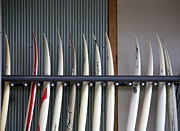Surf Lifestyle Metal Prints - Surfboards Metal Print by Ivan SABO